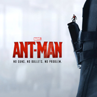 AntManOption3